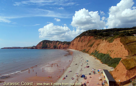 Sidmouth Pubs - Cannon Inn